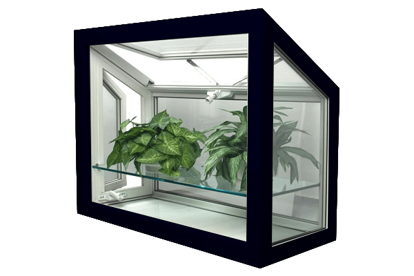 greenhouse windows black