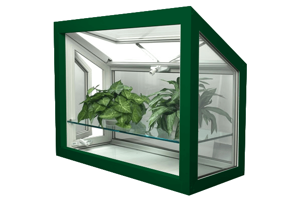 greenhouse windows forest green